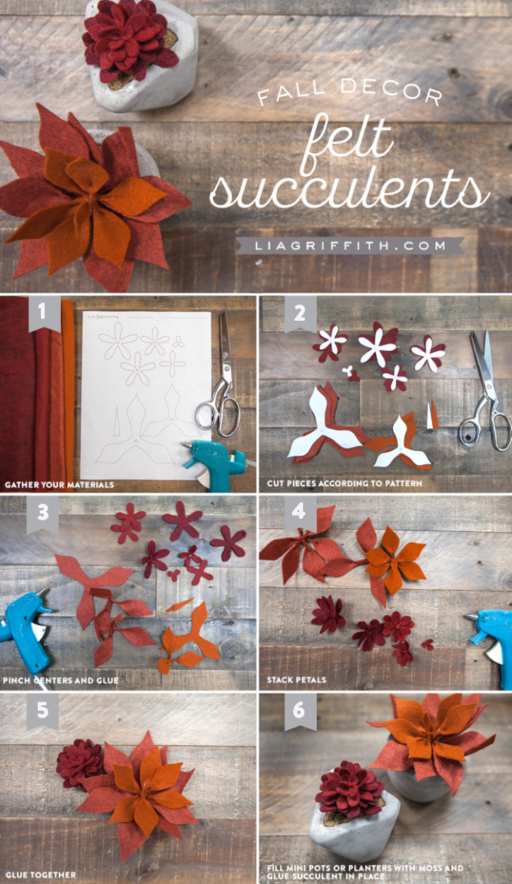 Fall_Felt_Succulents_Tutorial