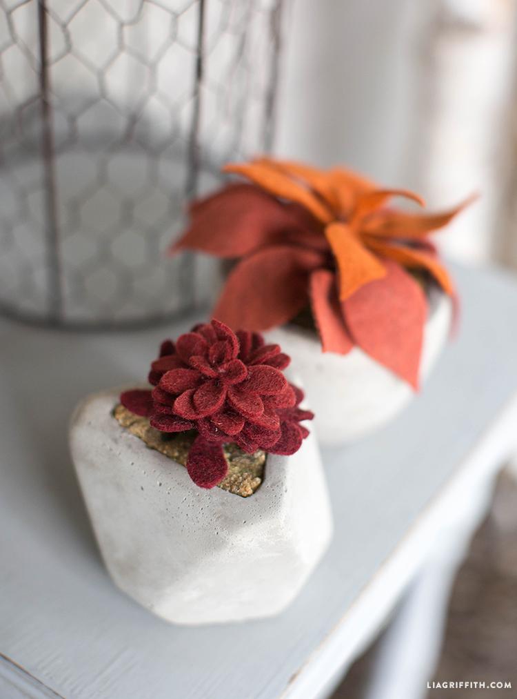 Fall_Front_Porch_Succulents
