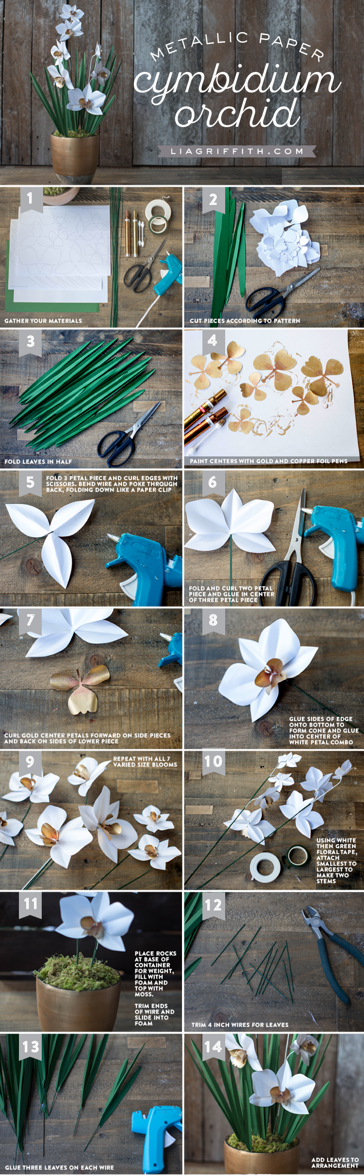 Paper Cymbidium Orchid Plant Lia Griffith They Poked Brads Through A Piece Of Cardboard Paperclip