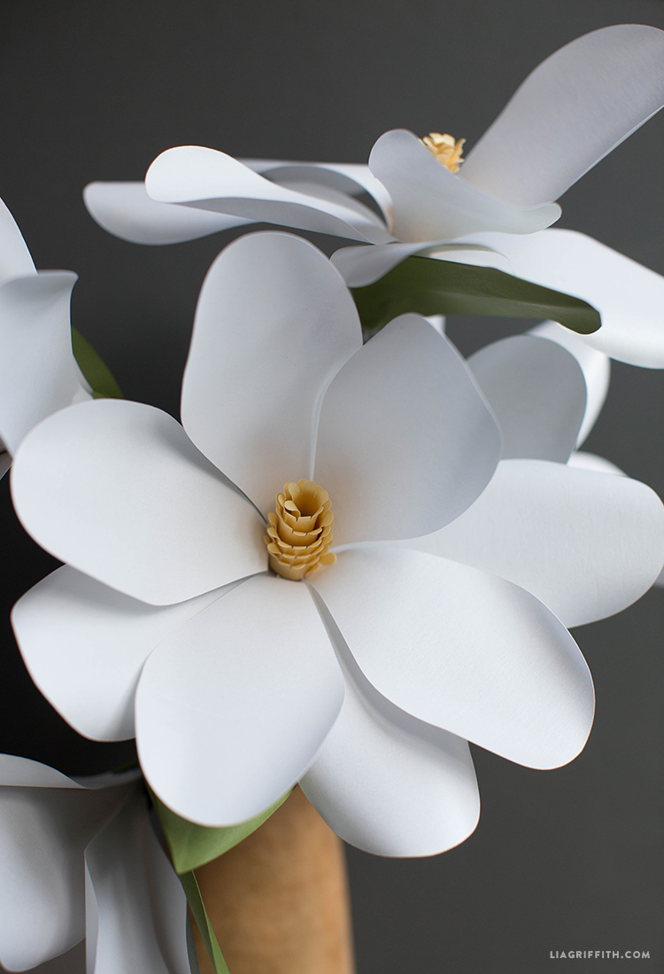 paper magnolia flower lia griffith