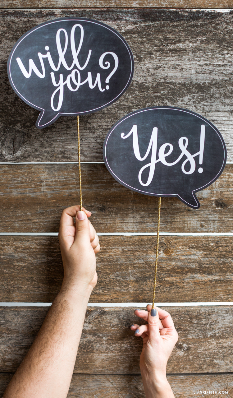 Will You Marry Me Signs Lia Griffith