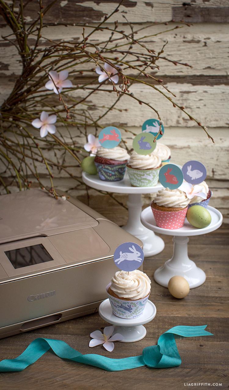 Canon_Cupcake_Wraps_1