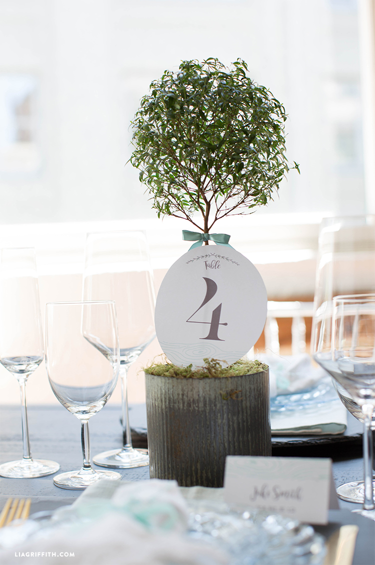 Herb and Woodgrain Table Numbers - Lia Griffith
