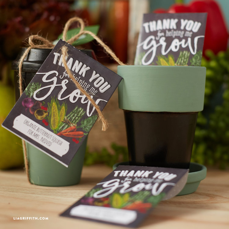 Seed Packet Teacher Gift Ideas Lia Griffith
