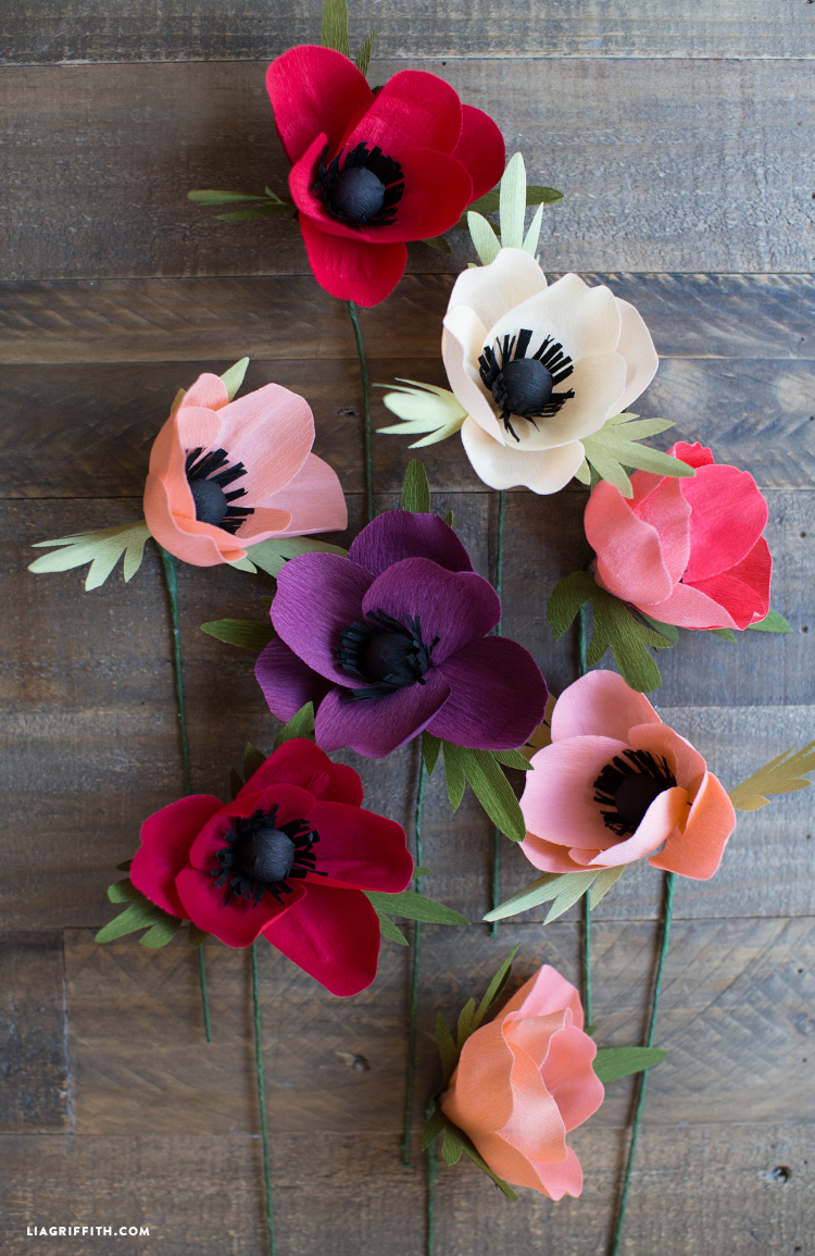 My first plane trip essay photo 3