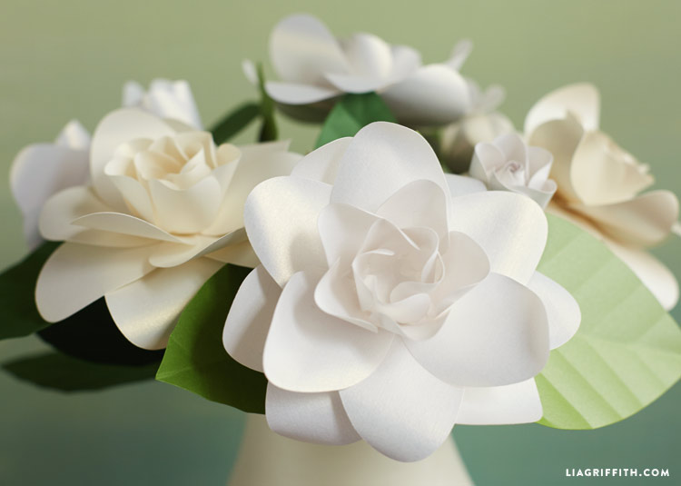 Frosted Paper Gardenia Flowers , Lia Griffith