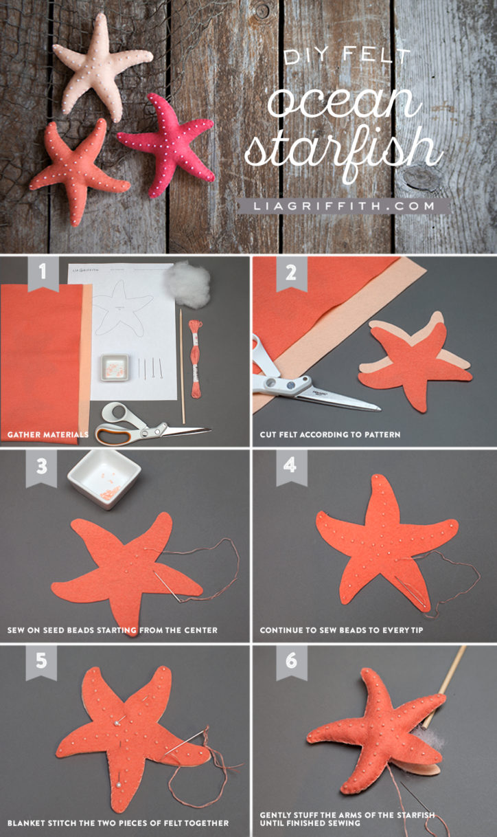 Tutorial_FeltStarfish
