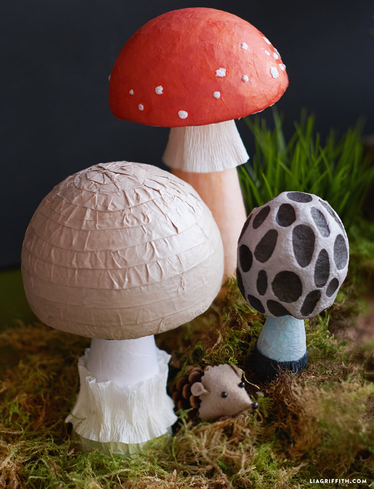 fairy_tale_mushrooms_00002