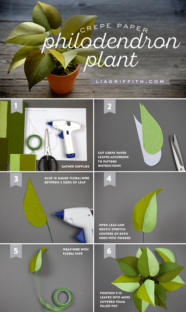 Crepe Paper Philodendron Tutorial
