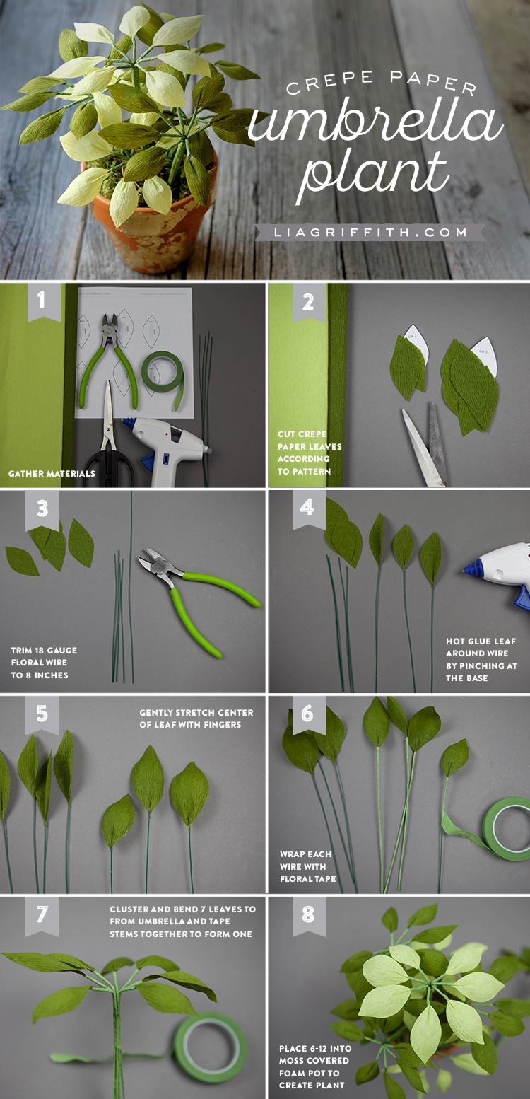 Crepe Paper Umbrella Plant Tutorial