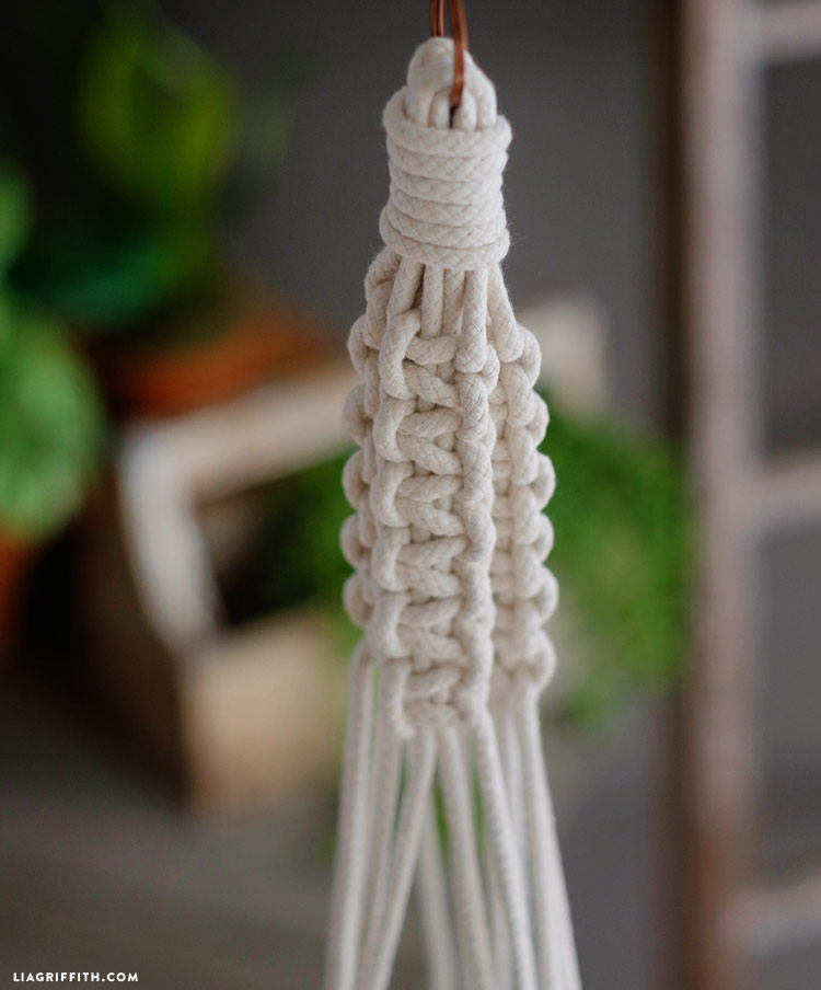 picture about Free Printable Macrame Plant Hanger Patterns referred to as Braided Macrame Plant Holder - Lia Griffith
