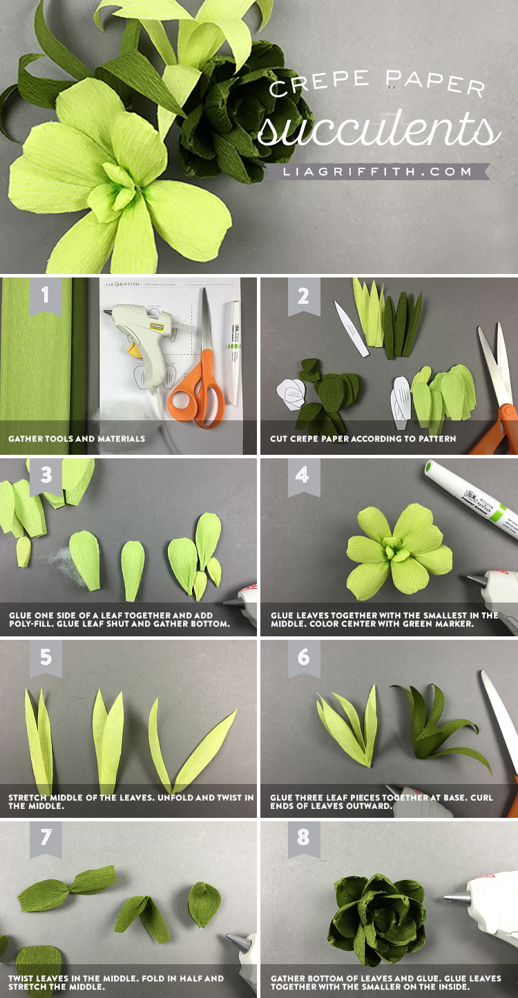 crepe paper succulents tutorial