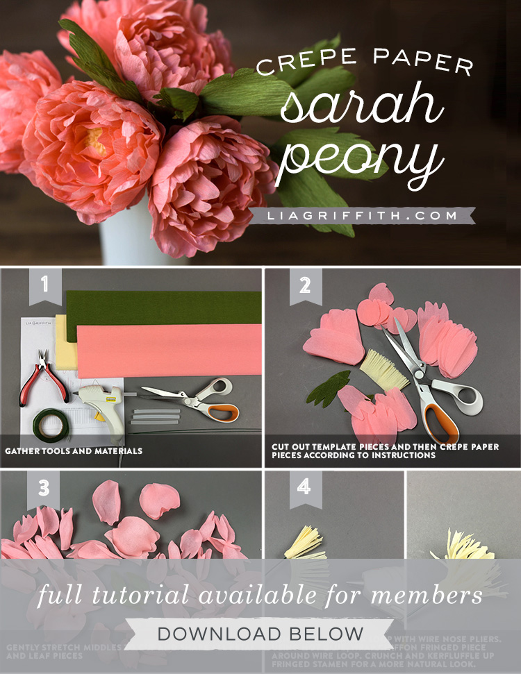 Crepe Paper Sarah Peonies Lia Griffith