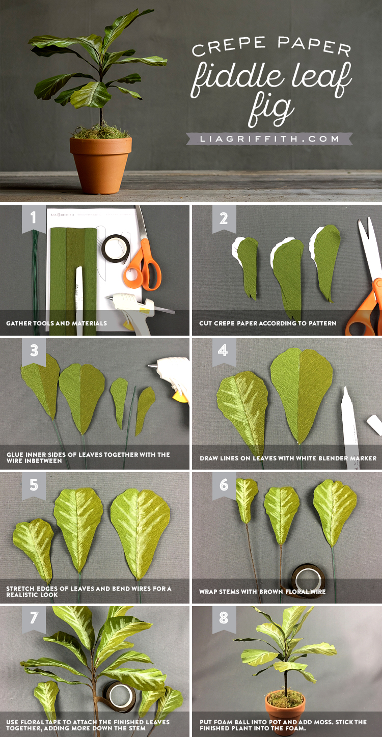 potted crepe paper fiddle leaf fig
