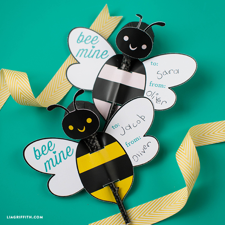 Bee mine lollipop wrap