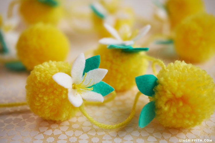 Pom Pom Lemons