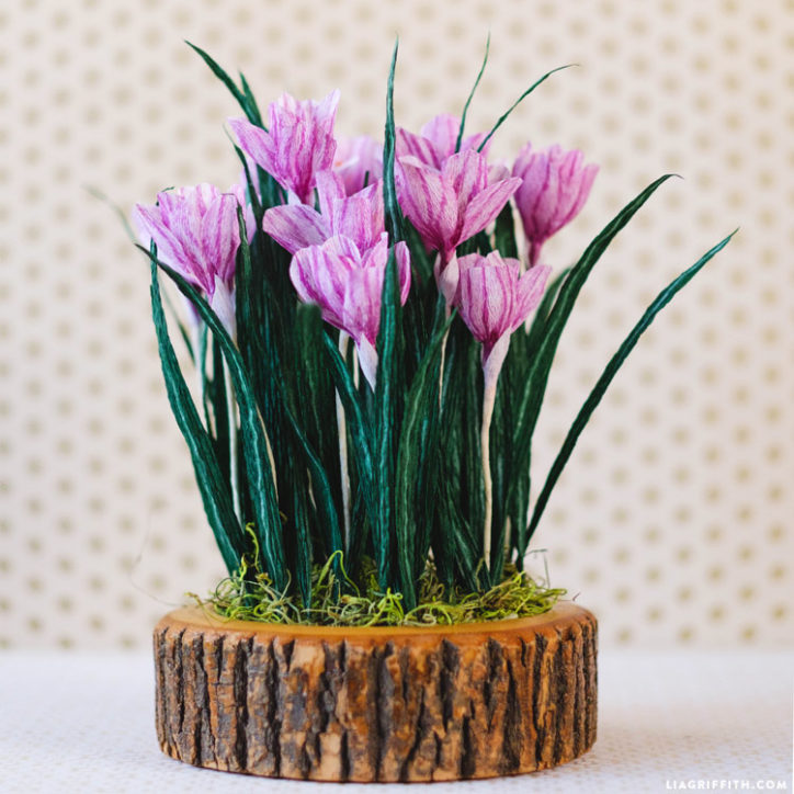 crepe paper crocus flowers on wood stump