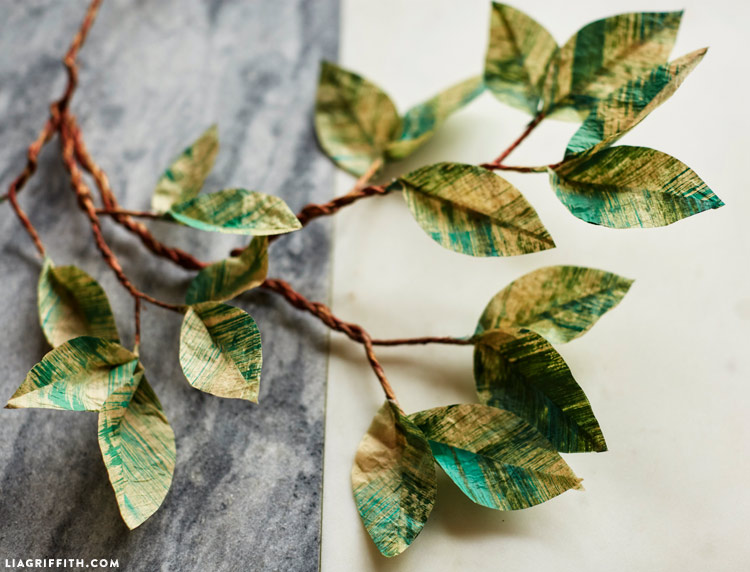 Tissue Leaf Branch