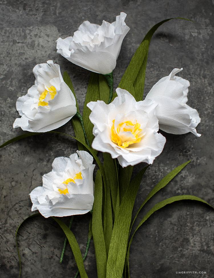 Crepe Daffodils
