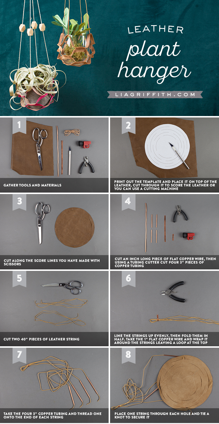 DIY Plant Hanger Tutorial
