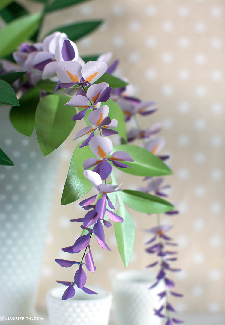 Paper Wisteria Plant Lia Griffith