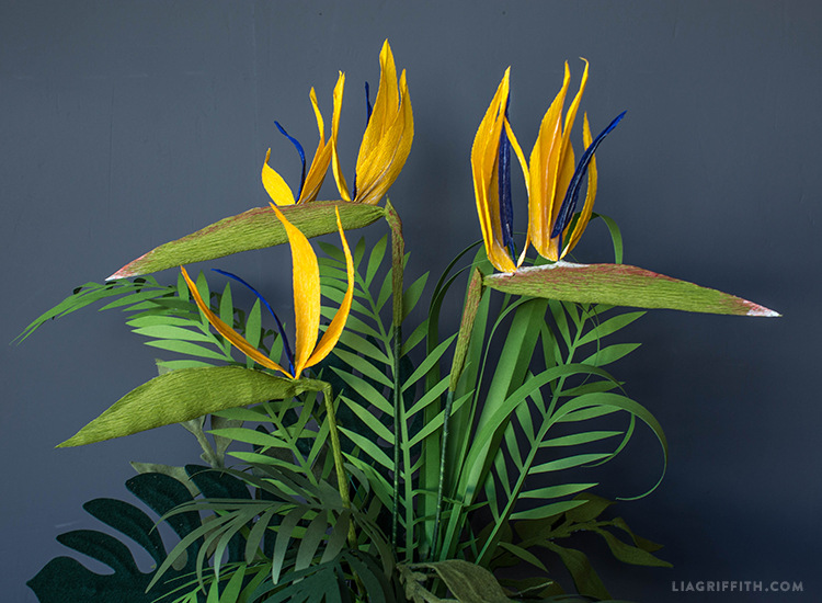 paper birds of paradise