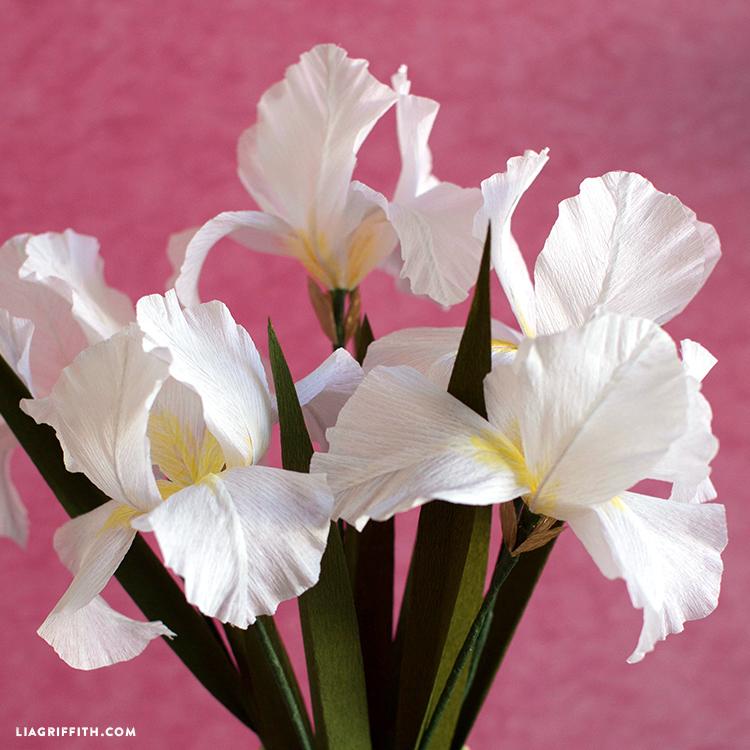 diy iris flowers