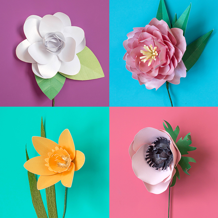 Paper flower kits yolarnetonic paper flower kits mightylinksfo