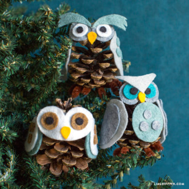 Video Tutorial: Our Favorite Pinecone Owls
