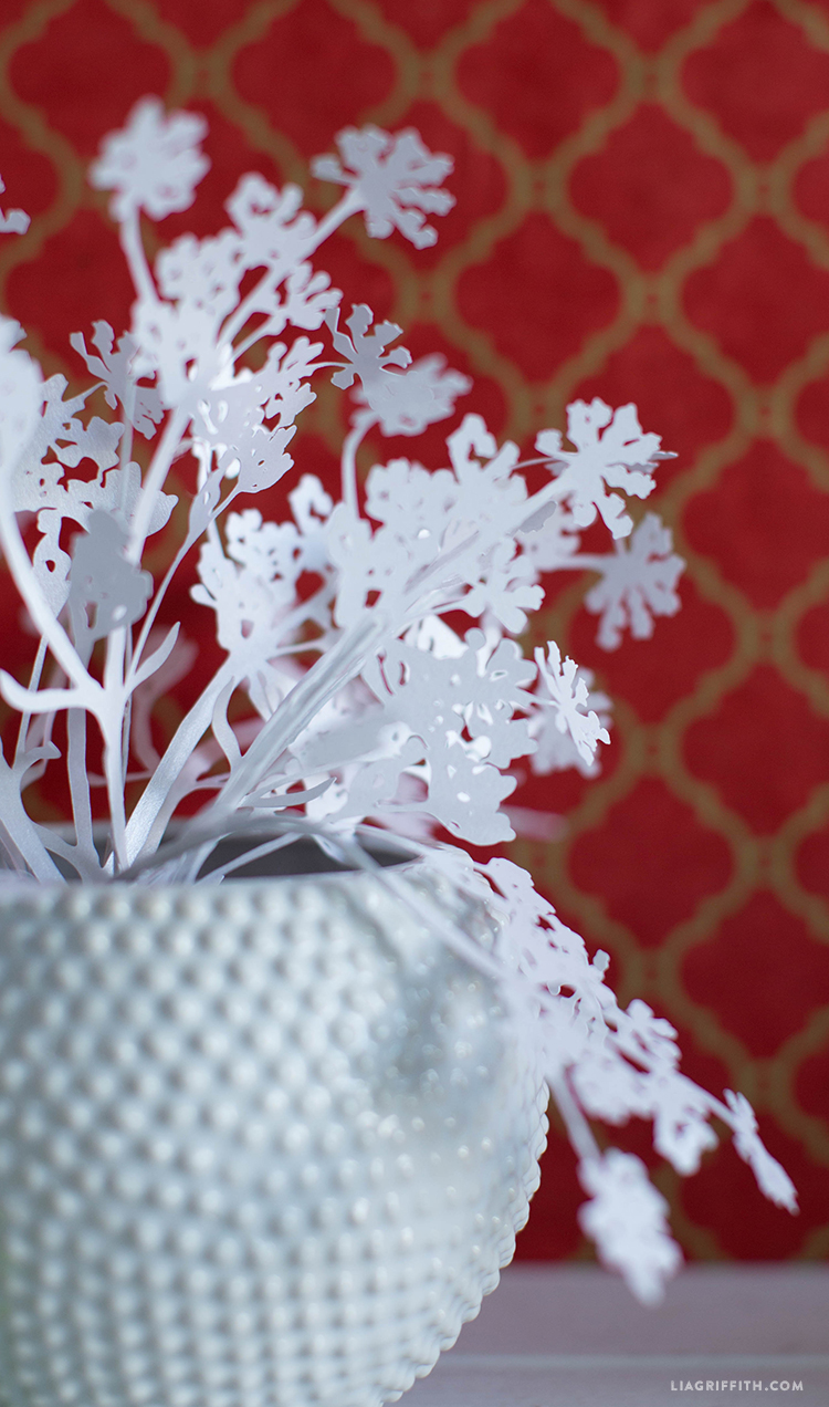 diy queen anne's lace
