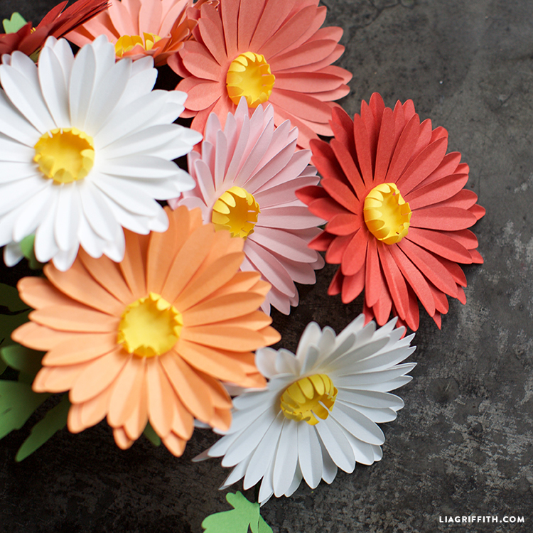 paper daisy flowers