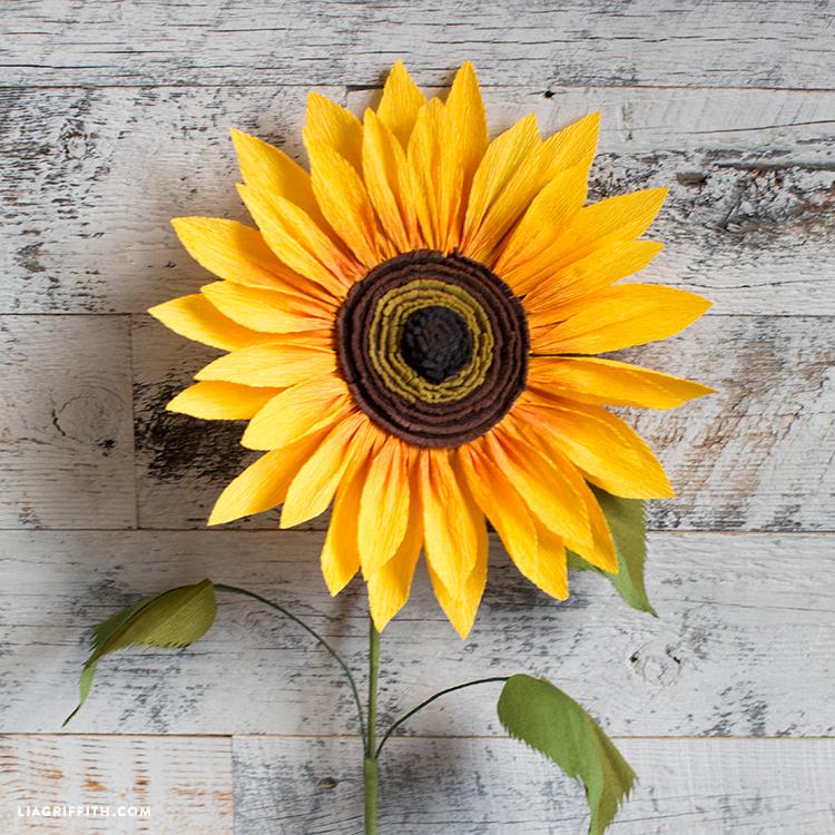 jumbo crepe paper sunflower
