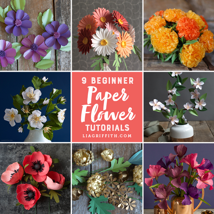 9 paper flowers for beginners lia griffith flowers for one and all mightylinksfo