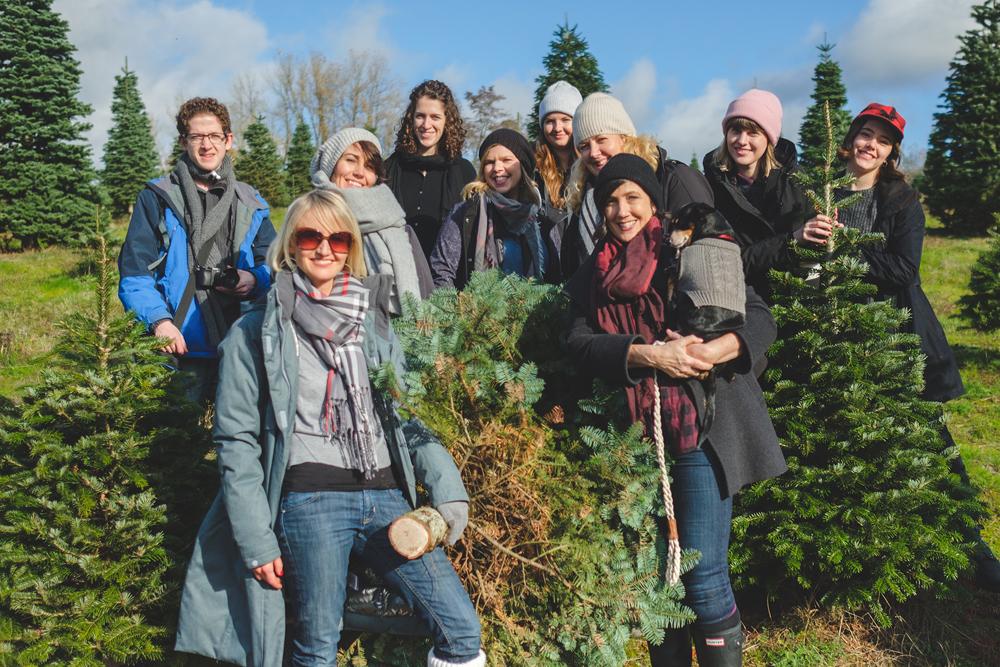 christmas tree farm visit
