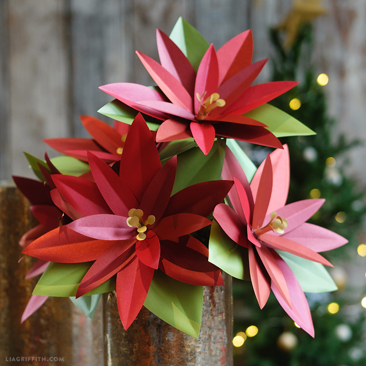 paper poinsettia plant project