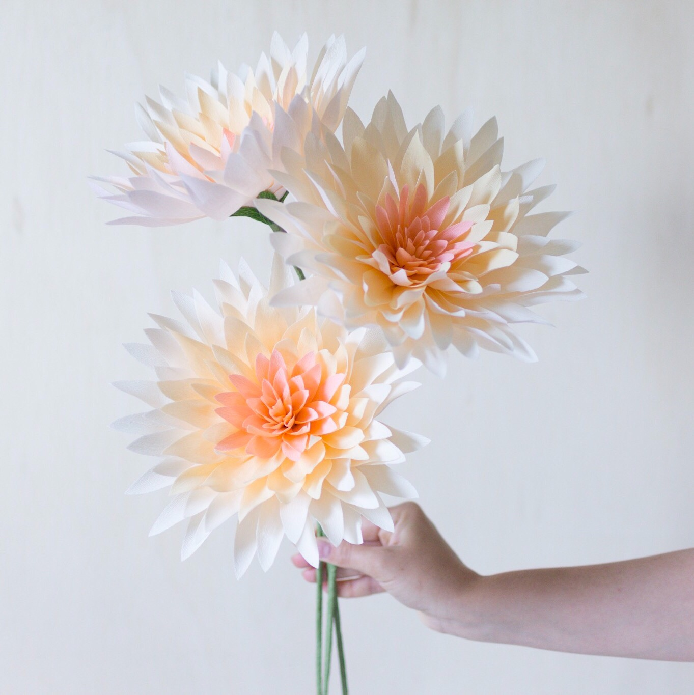paper flowers by meredith and cherie eastburn