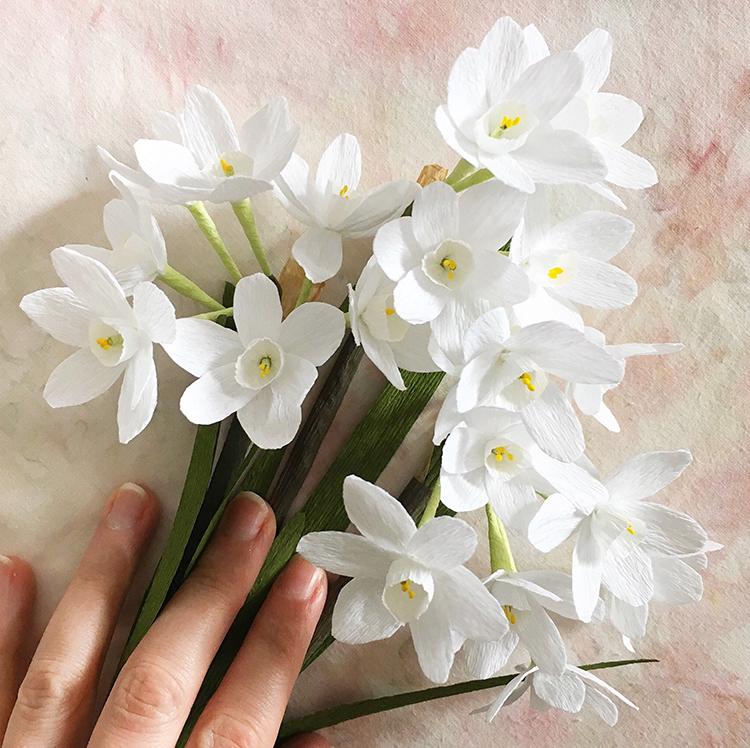susan beech paper flowers