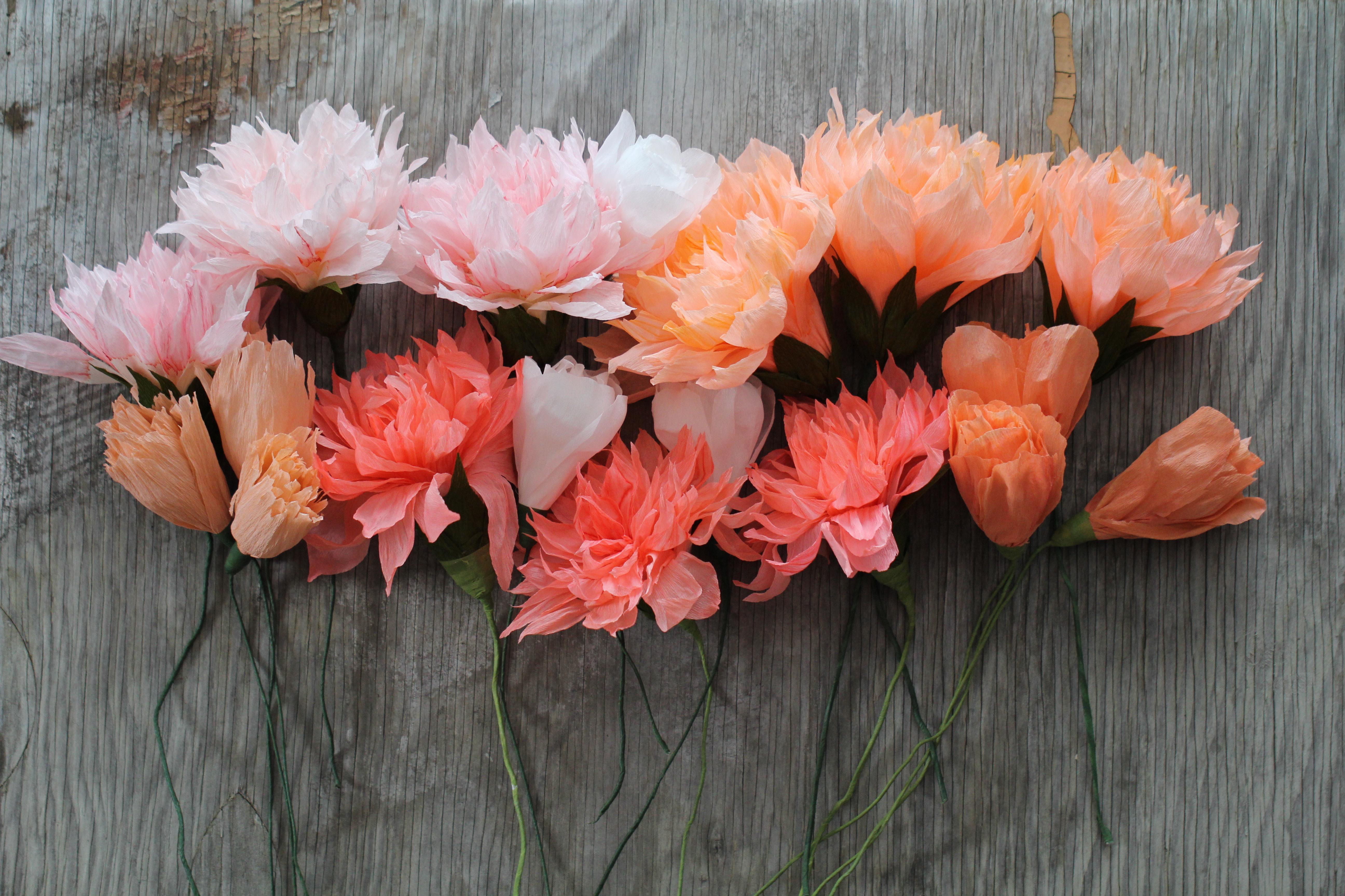 florabeane paper flowers