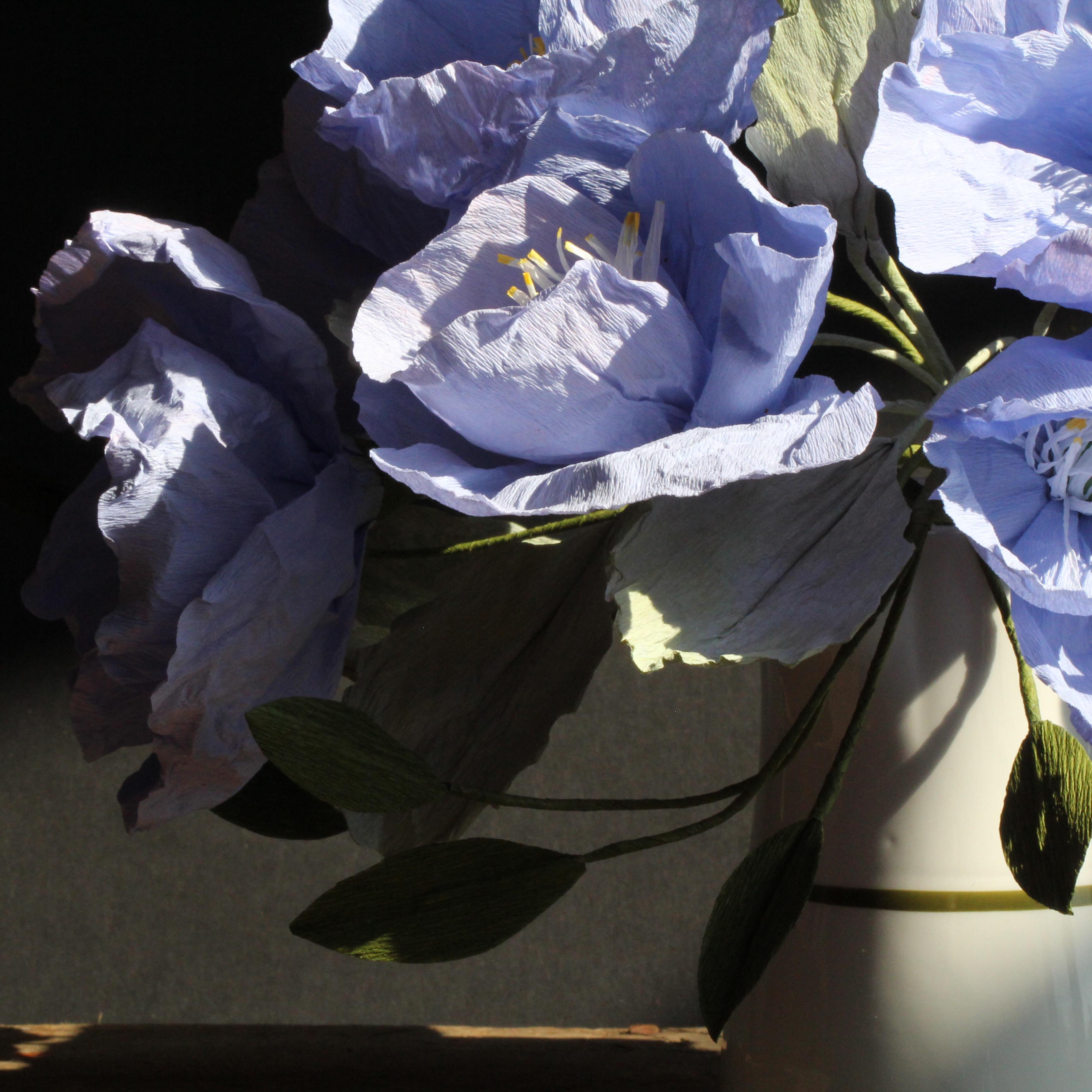 paper flower artist amity beane
