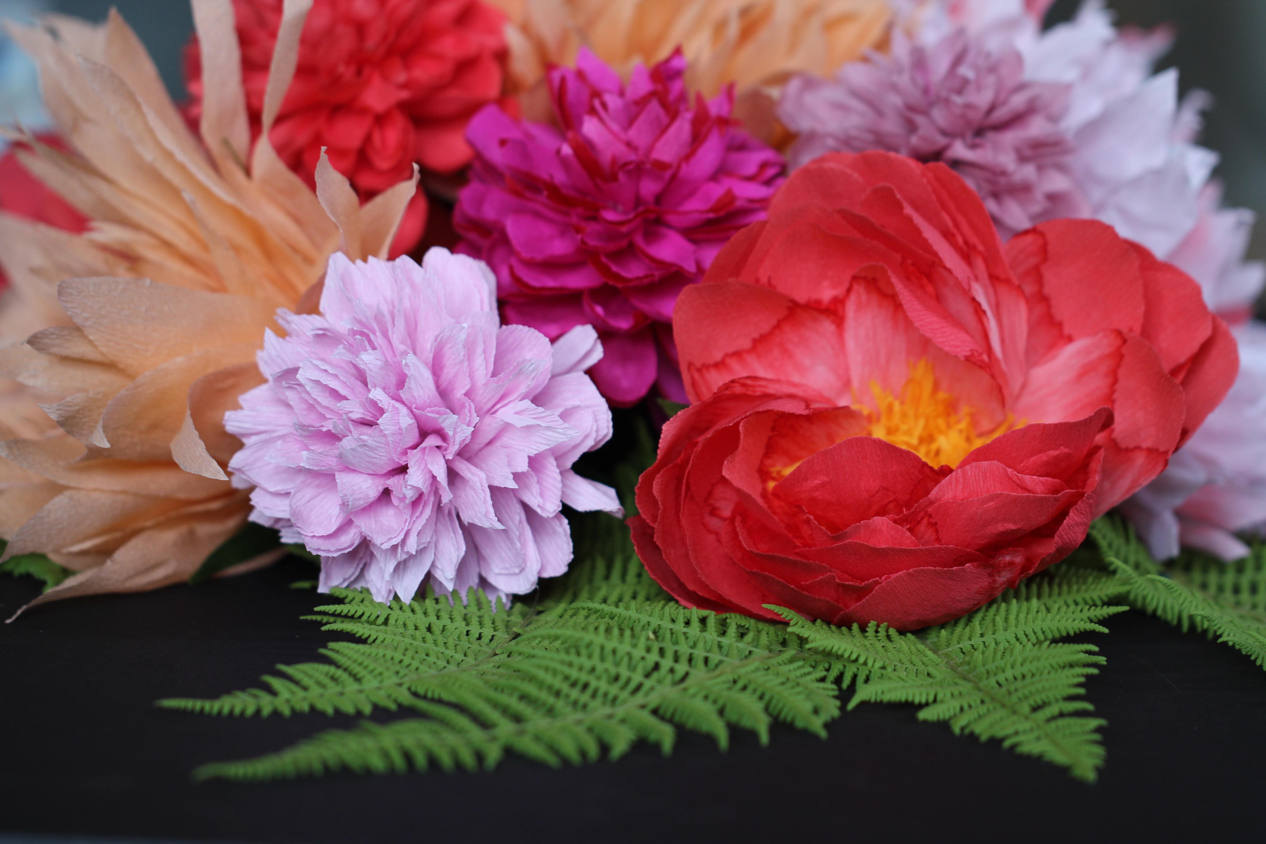 paper flower amity beane