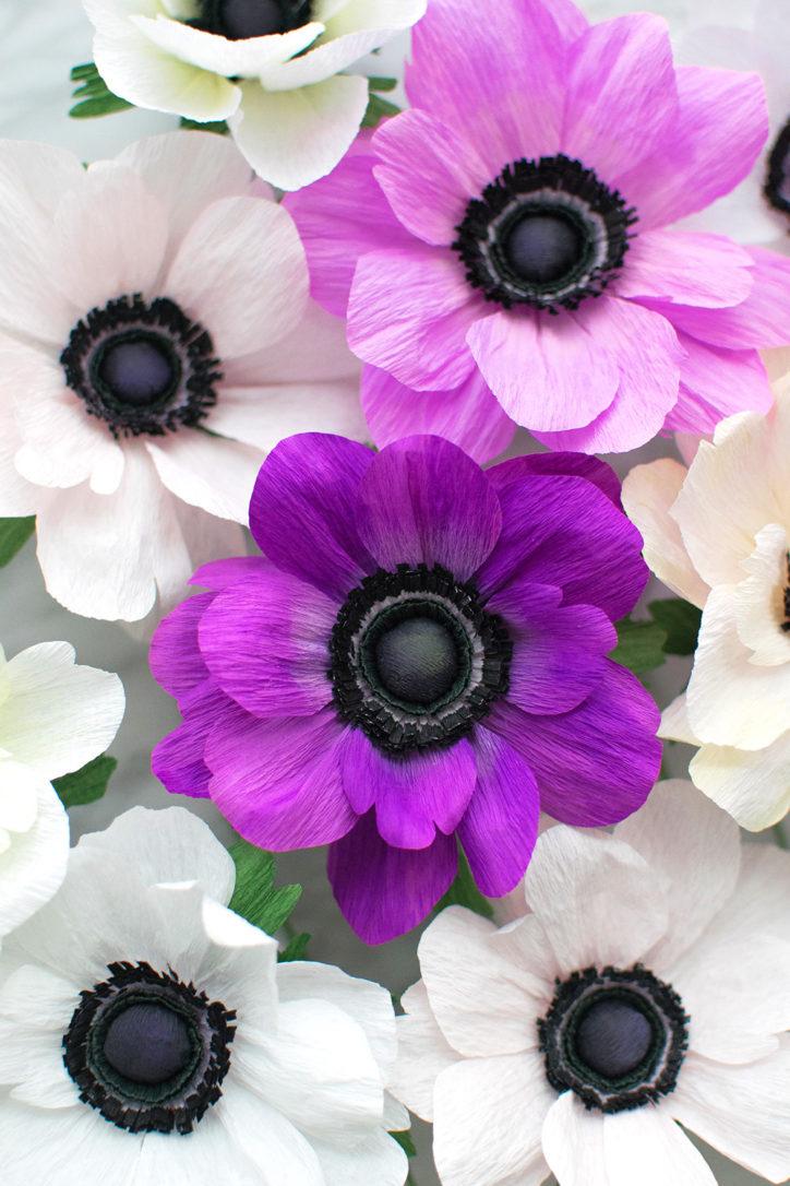 paper flowers jessie chui