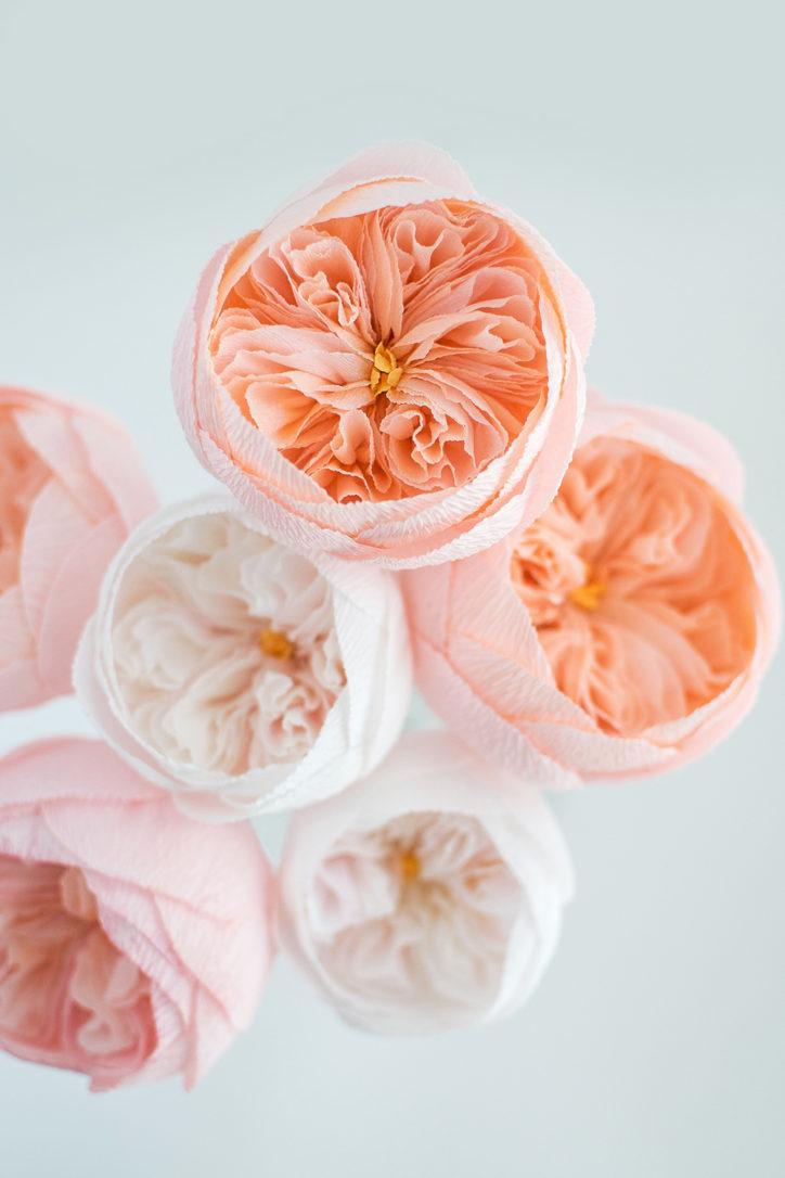 paper flower artist jessie chui