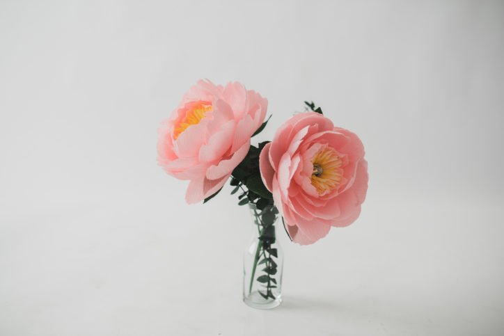 paper flowers thao hoang