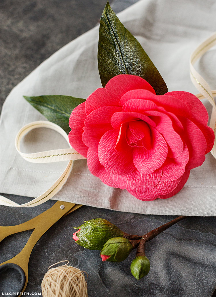 paper camellia