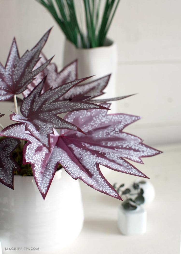 diy paper begonia