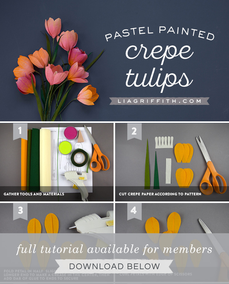 Photo tutorial for pastel painted crepe paper tulips by Lia Griffith