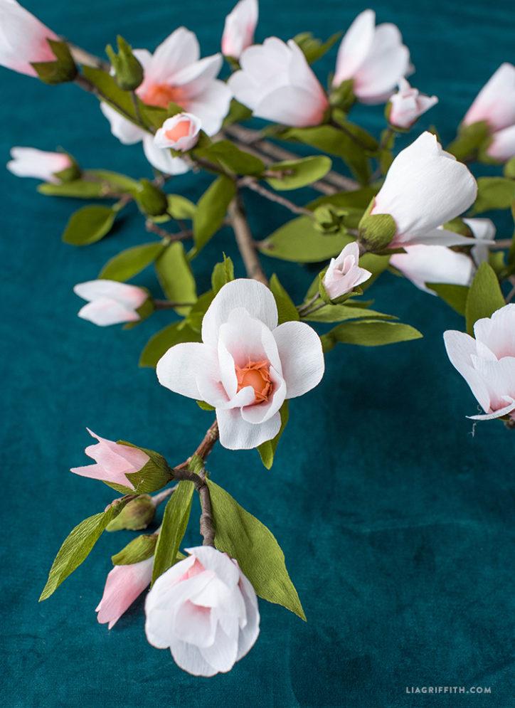 paper magnolia branch
