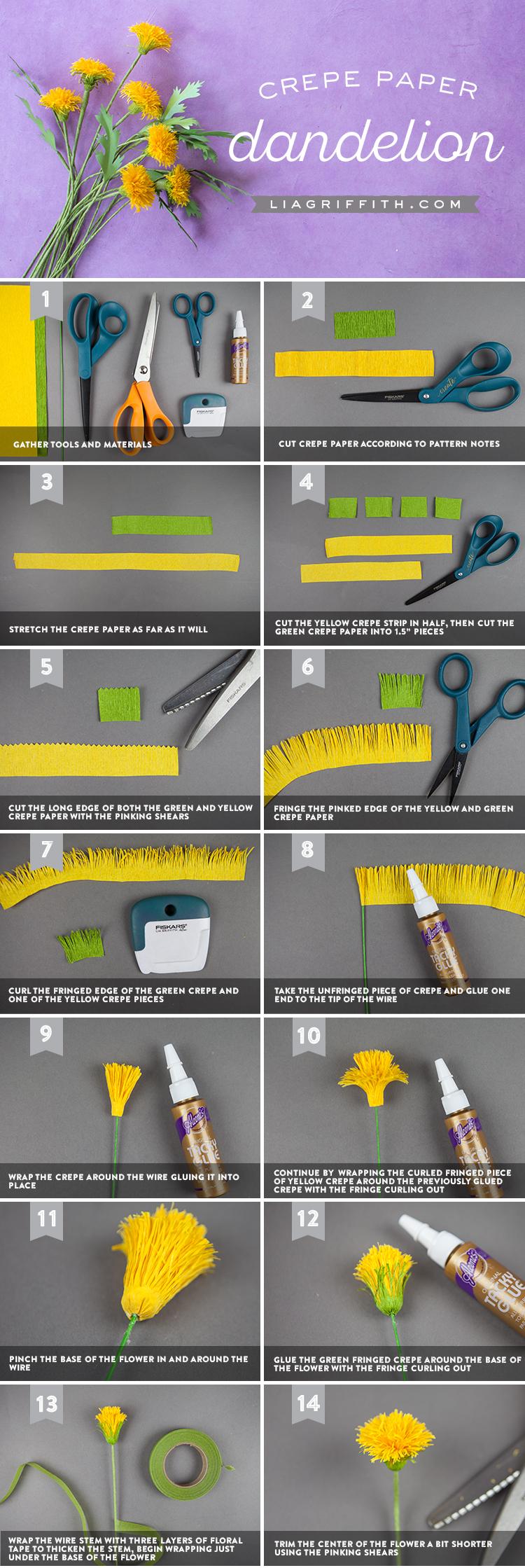 dandelion tutorial