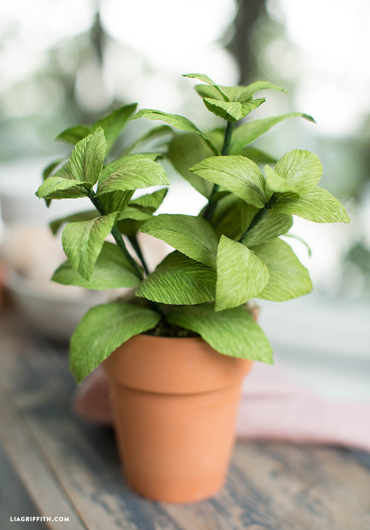 easy crepe paper basil plant