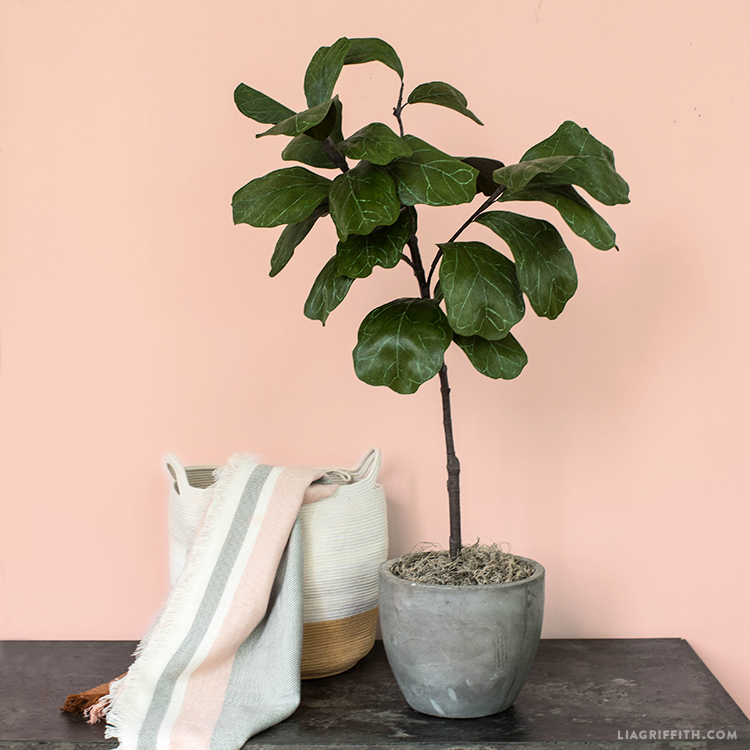 crepe paper fiddle leaf fig tree